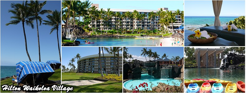 大岛是夏威夷群岛中最年轻